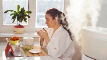 facial steamer vs humidifier